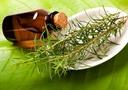 Десять причин всегда держать в аптечке баночку с маслом чайного дерева