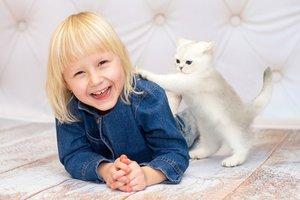 Какие кошки хорошо ладят с детьми